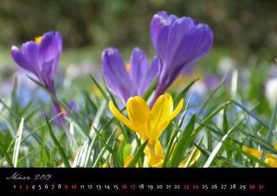 Kalender 2019-04