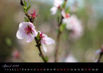 Kalender 2019-05