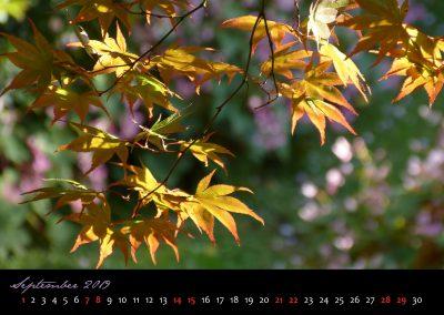 Kalender 2019-10